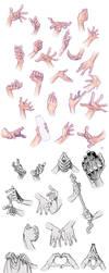 Hand Compilation by Tamasaburo09