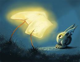Light my way by aosFISH
