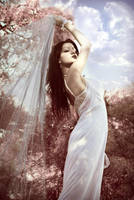 Vintage Spring by Isis-Photography