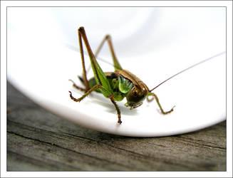 Grasshopper by e2k