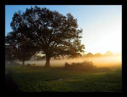 Winter Mist by chris333593