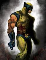 Wolverine by darko30