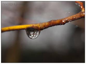 Drop II by ZaZoom