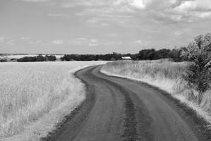 Rural Road BW by werwolf-lg