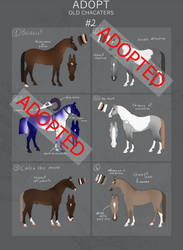 HORSE ADOPT|old oc's|#2 LOW PRICES OPEN by BlueBirdFeathers