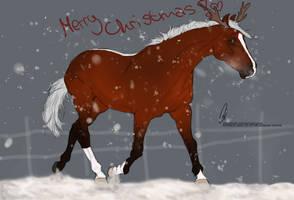 RvS Her Majesty - SOLD by RvS-RiverineStables