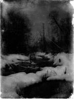 Frostbitten Forest by jhannigan
