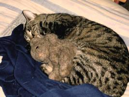 Feline - Teddy interacial love by MadeleineAlana