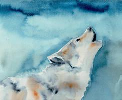 Wolf by Sunhorde