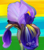 Iris Flower Abstract Painting by youlittlemonkey