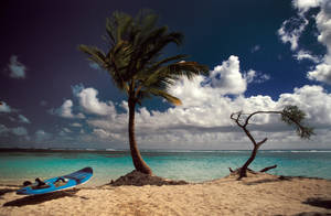 Wonder Beach by hipe-0