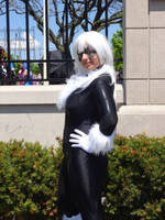 Anime North 2014 - Black Cat by CallMeMrA