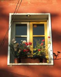 Uneven window by dervishd