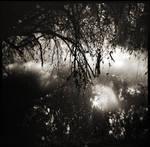 Teardrops river by etchepare
