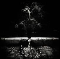 The dark flow of life by etchepare