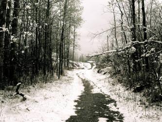 Wonderland Walkway 2 by Futiafox