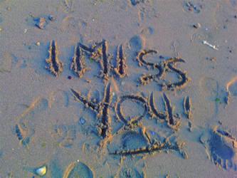 I miss you Lryic by Futiafox