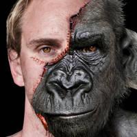 A New Face by JoshDykgraaf