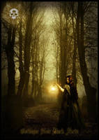 The Forest of Witchery by luciferous-glow