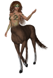 Centaur by Summon-my-Soul