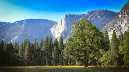 Yosemite by AlphaWolf209x