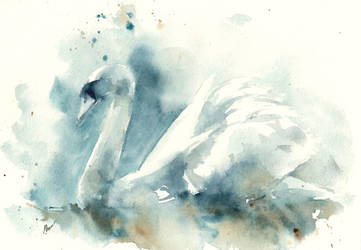 Swan lake by verda83