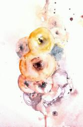 Bucce e bucce by verda83