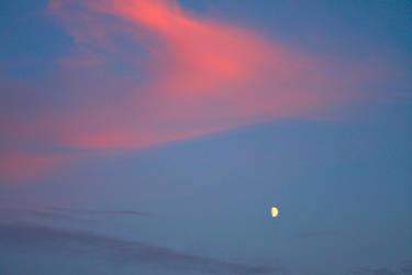 Night sky E by BreezeStock