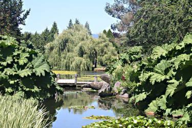 Bridge and Plants by BreezeStock