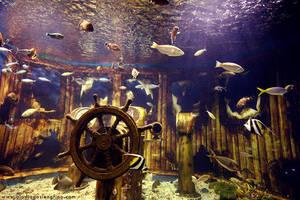 Underwater by BlackMageAlodia