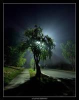 twas a foggy night by NJacobs