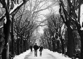 Winter's strangers II by IoaSan