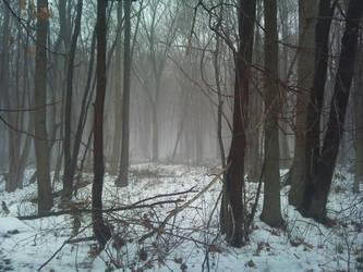 Mist by Rothar