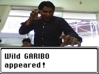 Wild GARIBO appeared by OmikronD