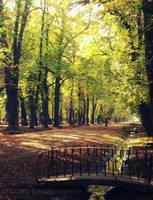 Autumn through my eyes by Danutza88