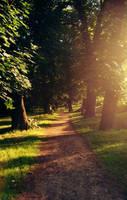 The road is long by Danutza88