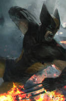 Wolverine by Memed