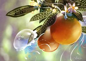 Orange Jelly. by Pochi-mochi