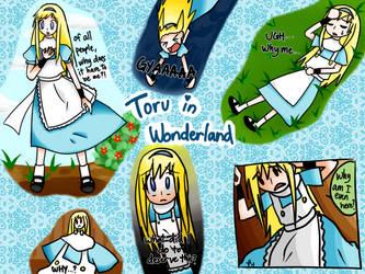 Toru in Wonderland Montage by se-rah