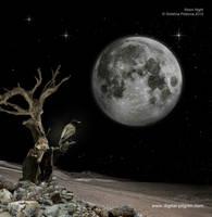 Moon Night by Detelina