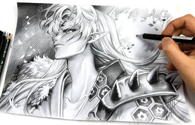 Sesshomaru by Naschi