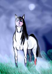 Das Pferd mit dem Gesicht - The Horse with a Face by 0Snu