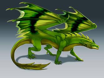 Kiwi Dragon by magmi