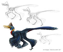 Creature Anatomy lesson3_Bird Microraptor hybrid by Spighy