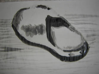 Silver Slipper by DreamerSpirit