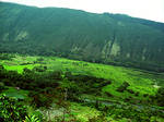 Waipio Valley From the Road by bloomingvinedesign