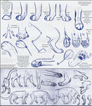 Fancy Feline Feet (tutorial reload) by SterlingKato