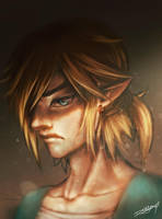 Link / TLoZ: Breath of the wild by DebbyandArt