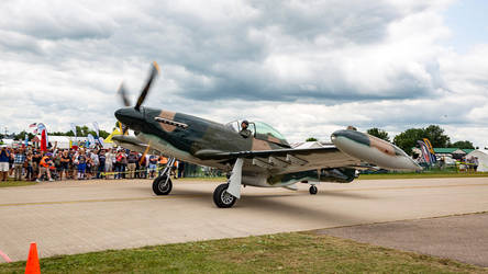 North American P-51D/Cavalier F-51D Mustang II by arejaye