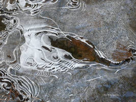 Ice Art by Nature by Mogrianne